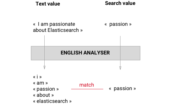 english-analyzer